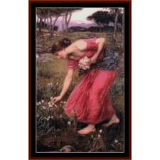 Narcissus, 2nd edition