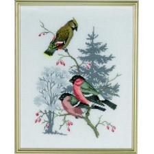 Bullfinch & waxwing