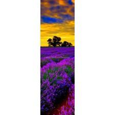 Storykeep Lavender Fields