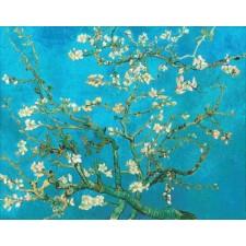 Almond Blossom Blue