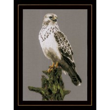 Counted cross stitch kit Falcon