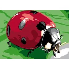 Canvas Ladybug