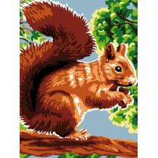 Canvas Squirrel