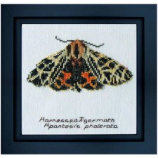 Cross Stitch Kit Harnessed Tiger Moth