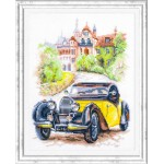 Cross stitch kit Retro Style. France