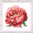 Cross stitch kit Red Peony