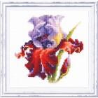 Cross stitch kit Iris