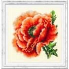 Cross stitch kit Poppy