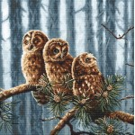 Cross stitch kit Owls Family