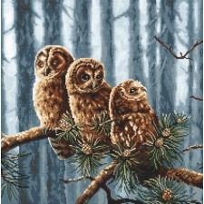 Cross stitch kit Owls Family
