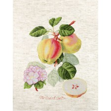 Cross stitch kit The Dutch Codlin - Luca-S