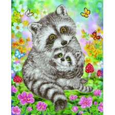 Diamond Dotz Sweet Racoons