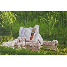 Diamond Dotz Mother Swan & Signets - Needleart World