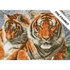 Diamond Dotz Pre-framed Kit - Tigers - Needleart World