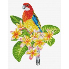 Pre-printed cross stitch kit Frangipanni Rosella - Needleart World