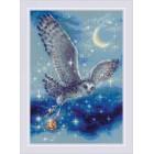 Cross stitch kit Magic Owl