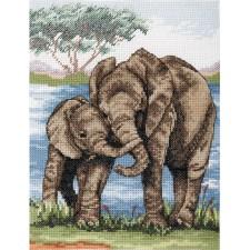 Olifanten - Elephants