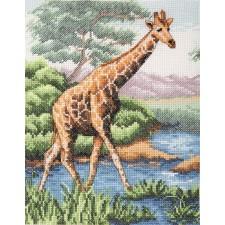 Giraf - Giraffe