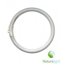 Naturallight ronde tube 22W