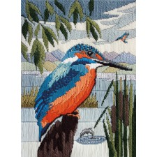 IJsvogel - Kingfisher
