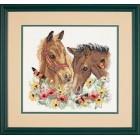 Paarden vrienden - Horse Friends