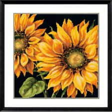 BORDUURKIT Zonnebloemen - DRAMATIC SUNFLOWER