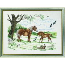 Paard met veulen (horse with foal)