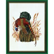Jachthond met fazant (huntig dog and pheasant)