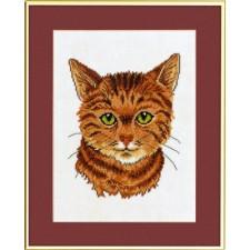 (OP=OP) Rode kat (red cat)