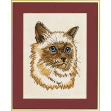 (OP=OP) Pers (persian cat)