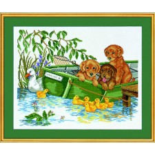 Puppys in boot (puppies in boat)