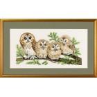 4 Uilen (owls)
