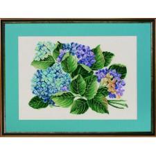 Hortensia - Hydrangea