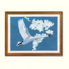 Zwaan in vlucht - Swan