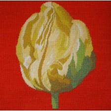 Kussen gele tulp - Yellow Tulip