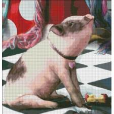 QS Yes Piggy