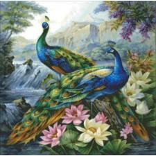 Mini 2 Dancing Peacocks
