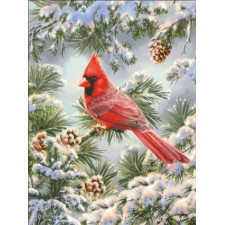Cardinal In Snowy Pine