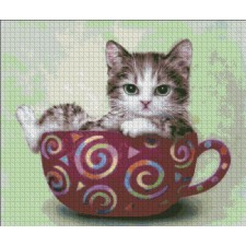 Cup Kitty