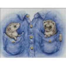 Pocket Ferrets
