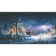 Winter Wonderland TR