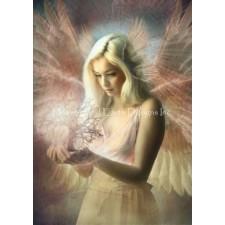 Angel Jehoël