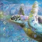 Sea Turtle Spirit Of Serendipity