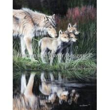 Mini Reflections