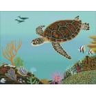 Joes Turtle
