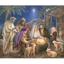 The Nativity Max Colors DG