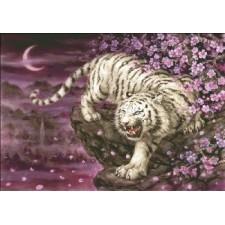 White Tiger Cherry Blossoms