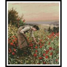 Girl Picking Poppies - #11304-REHS