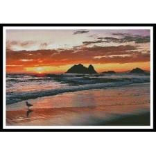 Californian Sunset - #11312