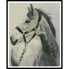 Grey Horse - #11320-HC